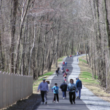 Great Greenways, Part 2: Radnor