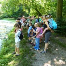 A Playful Pond Walk!