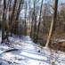 Winter Photojournal