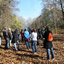 Geology Walk Recap