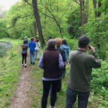 Spring Bird Walk List