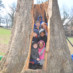 Canopy Tree Plantings for Earth Day!