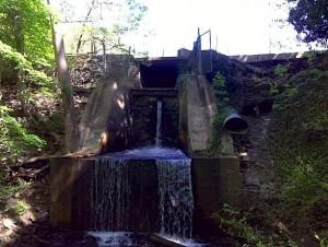 Broomall's Dam 4-24-2010