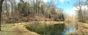Early Spring pond panorama in 2016