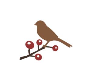 Christmas Bird Count @ Glen Providence Park - 3rd Street Entrance   Media   Pennsylvania   United States
